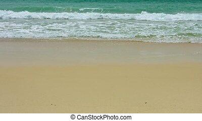 plage, ressac, sablonneux, exotique