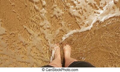 plage., sommet, summerfeeling., femme, vue., jambes, hd