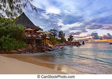 plage tropicale, café, seychelles, coucher soleil