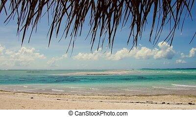 plage tropicale, lagune, polynésie française