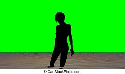 plage, vert, écran, femme, coucher soleil