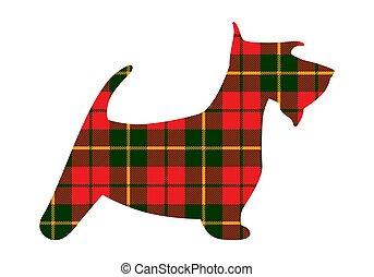 plaid, terrier, modèle, ecosse, texture, tartan, écossais, rouges