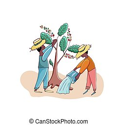 plantation., café, agriculteurs, vecteur, illustration., cutie, hommes, récolte, characters., dessin animé, eau, arbres.