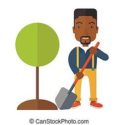 plante, arbre., jardinier, africaine