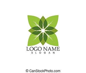 plante, feuille, nature, illustration, vecteur, vert