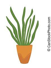 plante, maison, pot, isolé, vecteur, vert, white.
