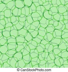 plante, modèle, cellules, micro, vecteur, fond