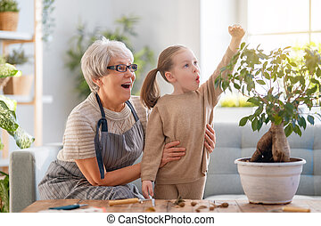 plants., famille, soucier