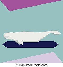 plat, baleine, beluga, conception