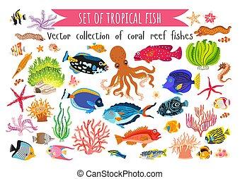 plat, ensemble, coraux, algue, style, fish