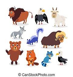 plat, ensemble, sauvage, nord, style, animaux, amérique