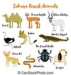 plat, style, ensemble, animals., vecteur, sauvage, désert