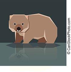 plat, wombat, conception