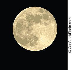 Illustrations De Pleine Lune 23 846 Images Clip Art Et Illustrations Libres De Droits De Pleine Lune Disponibles Pour La Recherche Parmi Des Milliers De Producteurs D Art Et De Clipart Vecteur Eps