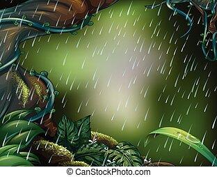 pleuvoir, scène, profond, forêt