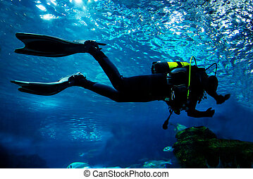 plongée, sous-marin, océan
