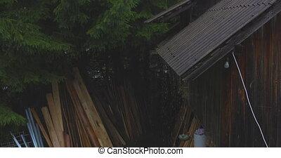 pluie, été, toit, sur, montagne, hut.4k.