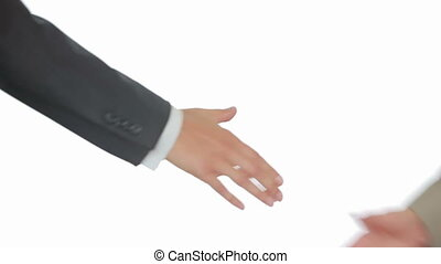 poignée main, business, secousse, hommes, deux, fond, mains, blanc