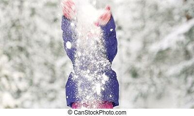 poignée, neige