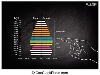 pointage, génération, 2016-2020, main, graphiques, 4, pyramides, population