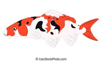 poisson koi orange