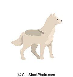 polaire, animal, arctique, illustration, vecteur, loup, fond, blanc