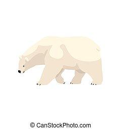 polaire, animal, arctique, illustration, vecteur, ours, fond, blanc