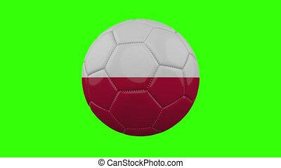 pologne, boucle, vert, alpha, transparent, tourne, balle, drapeau, fond