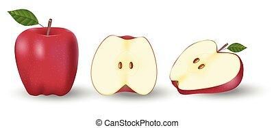 pomme, moitié, frais, vecteur, illustration, entier, apple., isolé, rouges, white., fruit