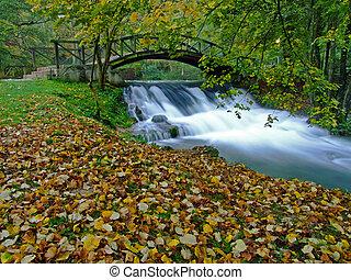 pont, mignon, nature, long, matin, rivière, exposition