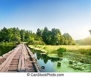 pont, sur, marécageux, rivière