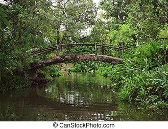pont, vieux, parc