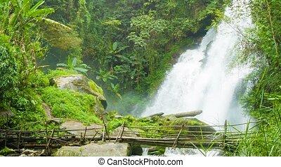 pont, waterfall., zoom, branlant, pied, bambou, tir