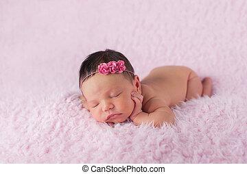 porter, rose rose, nouveau-né, girl, bandeau
