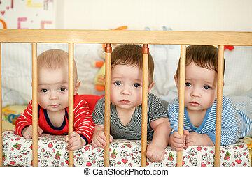 portrait, lit, triplés, nouveau né
