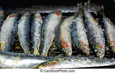 portugais, sardines