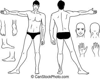 position homme, dénudée