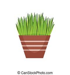 pot fleurs, magasin, fleur, illustration, article, décoratif, usines, vecteur, maison, assortiment, herbe, dessin animé, végétation
