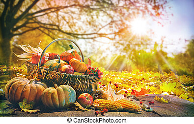 potirons, fond, thanksgiving
