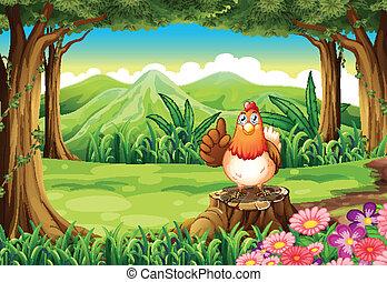 poulet, forêt