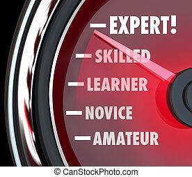 poursuite, amateur, expert, niveau, débutant, ou, aller, jauge, apprentissage, compétence, progrès, compteur vitesse, ton