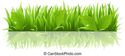 pousse feuilles, herbe
