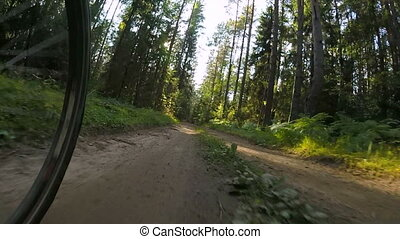 pov, été, cyclisme, forêt