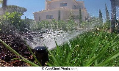 pov, pulvérisation, irrigation, jardin