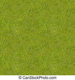 pré, herbe, vert, texture., seamless