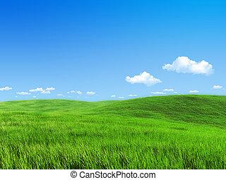 pré, nature, -, collection, vert, gabarit