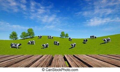 pré, paître, bois, perspective, vaches, table