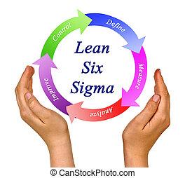 présentation, sigma, maigre, six, méthodologie