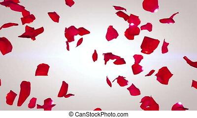 "prétentieux, ""petals, bas, roses, way"", tomber, rouges"