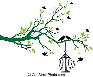 printemps, arbre, oiseaux, cage d'oiseaux